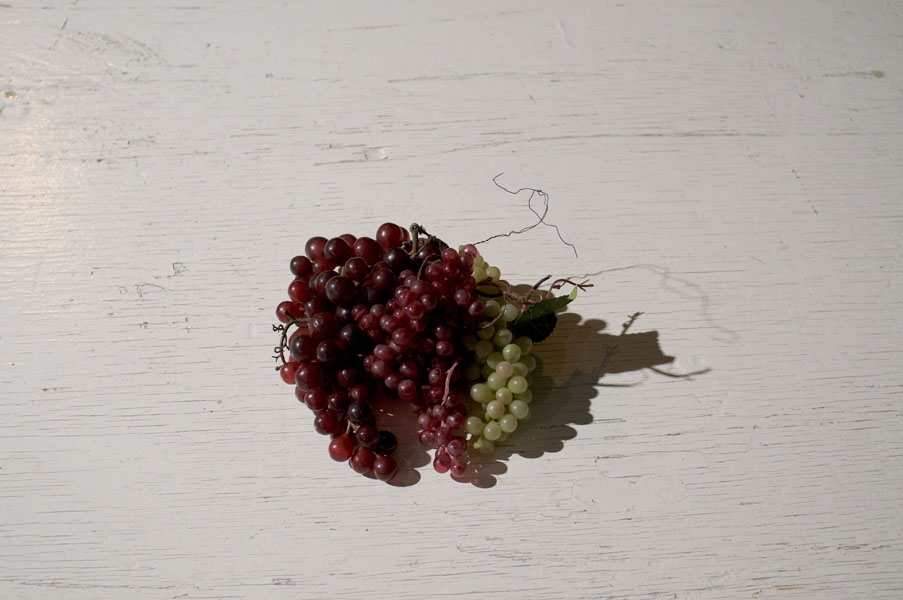 http://michaelmeyerphoto.com/files/gimgs/th-11_11_grapes-on-table-5089.jpg