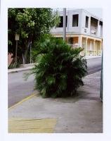 https://michaelmeyerphoto.com/files/gimgs/th-13_43_prculebra001.jpg